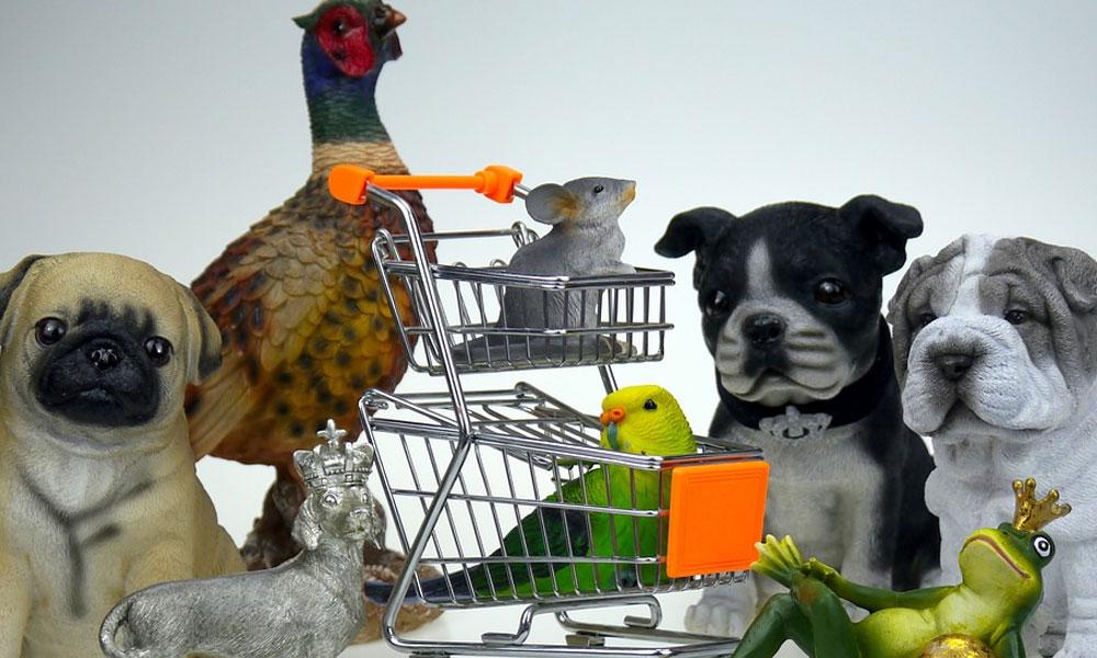 Estanterías para tiendas de animales