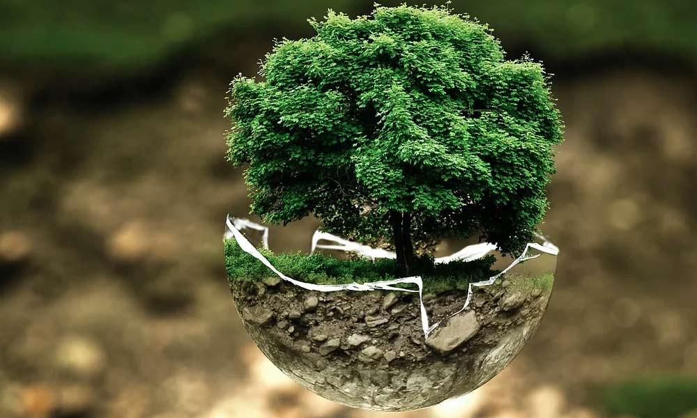 Estanterias de ocasión ayudan al medio ambiente